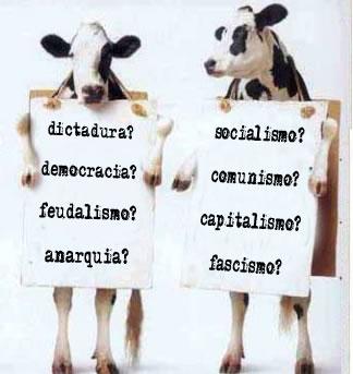 Economía mundial explicada con dos vacas. (visto en internet)